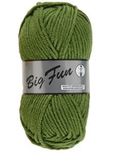 pelote 100 g BIG FUN de Lammy coloris 045 vert mousse