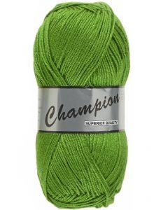 Pelote 100g Champion uni coloris 045 vert