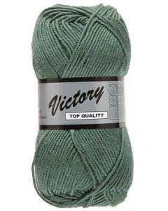 pelote Victory de lammy coloris 072 vert