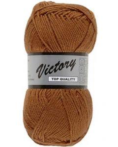 pelote Victory de lammy coloris 112 marron