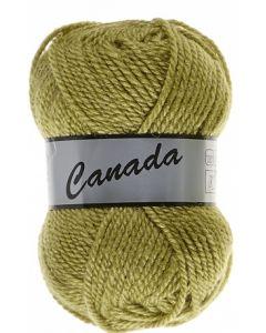 pelote 50 g canada de lammy 271 vert mousse clair
