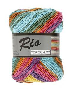 pelote de 100 g coton rio jacquard coloris 901