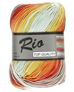 pelote de 100 g coton rio jacquard coloris 902